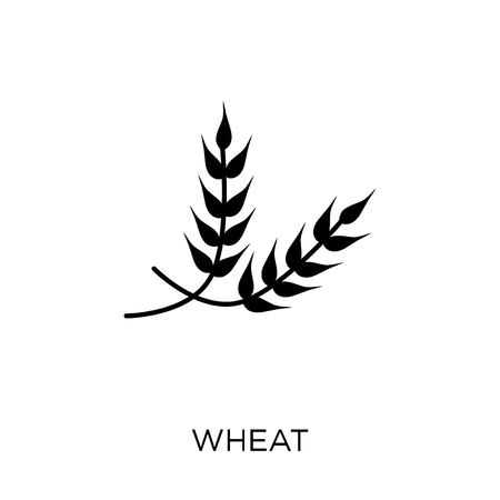 Wheat icon. Wheat symbol design from Agriculture, Farming and Gardening collection. Simple element vector illustration on white background.