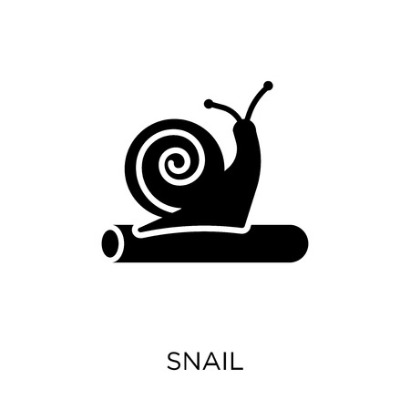 Snail icon. Snail symbol design from Animals collection. Simple element vector illustration on white background. Illustration