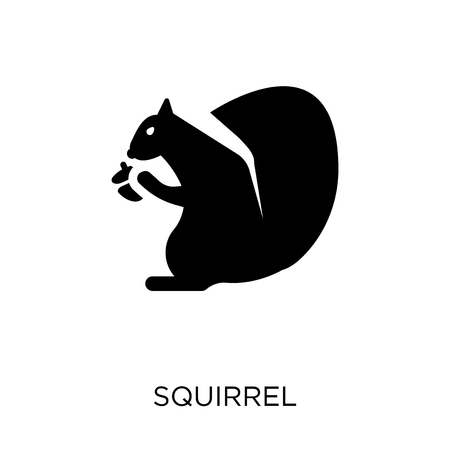 Squirrel icon. Squirrel symbol design from Animals collection. Simple element vector illustration on white background. Vettoriali