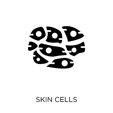 Skin Cells icon. Skin Cells symbol design from Human Body Parts collection. Illustration