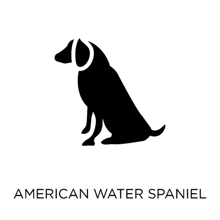 American Water Spaniel dog icon. American Water Spaniel dog symbol design from Dogs collection. Simple element vector illustration on white background.
