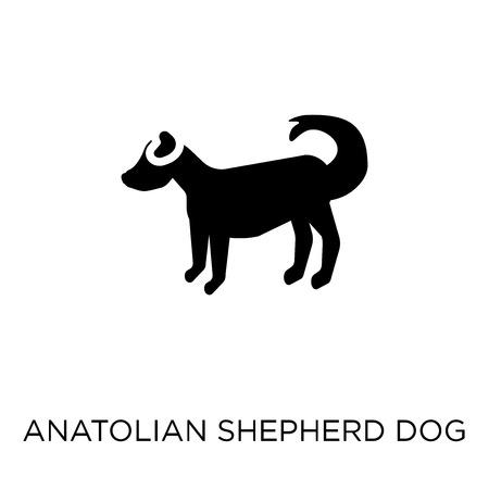 Anatolian Shepherd Dog dog icon. Anatolian Shepherd Dog dog symbol design from Dogs collection. Simple element vector illustration on white background.