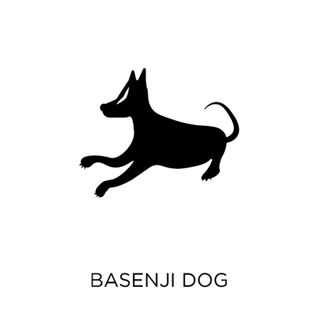 Basenji dog icon. Basenji dog symbol design from Dogs collection. Simple element vector illustration on white background.