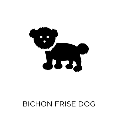 Bichon Frise dog icon. Bichon Frise dog symbol design from Dogs collection. Simple element vector illustration on white background.
