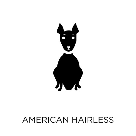 American Hairless Terrier dog icon. American Hairless Terrier dog symbol design from Dogs collection. Simple element vector illustration on white background.