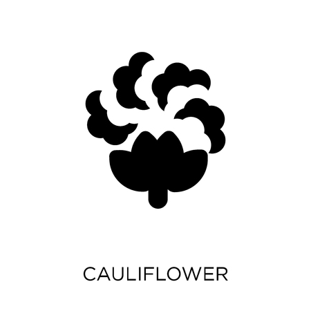 Cauliflower icon. Cauliflower symbol design from Fruit and vegetables collection. Simple element vector illustration on white background.