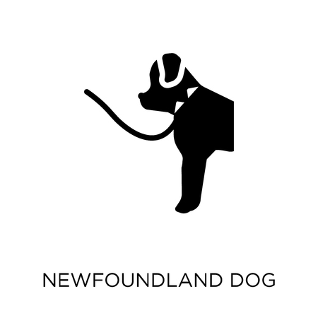 Newfoundland dog icon. Newfoundland dog symbol design from Dogs collection. Simple element vector illustration on white background.