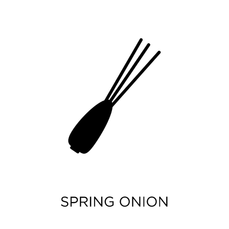 Spring onion icon. Spring onion symbol design from Fruit and vegetables collection. Simple element vector illustration on white background.