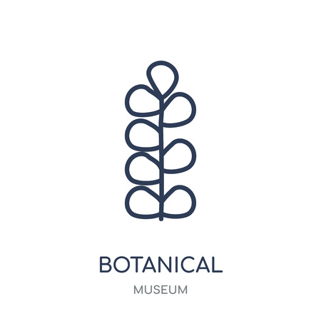 Botanical icon. Botanical linear symbol design from Museum collection. Simple outline element vector illustration on white background. Illustration