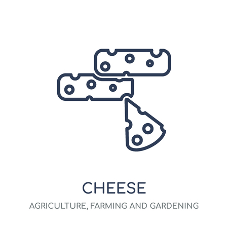 Cheese icon. Cheese linear symbol design from Agriculture, Farming and Gardening collection. Simple outline element vector illustration on white background.