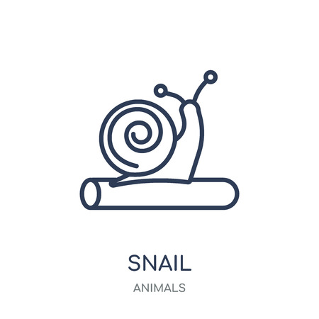 Snail icon. Snail linear symbol design from Animals collection. Simple outline element vector illustration on white background.