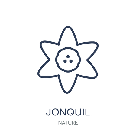 Jonquil icon. Jonquil linear symbol design from Nature collection. Simple outline element vector illustration on white background. Illustration