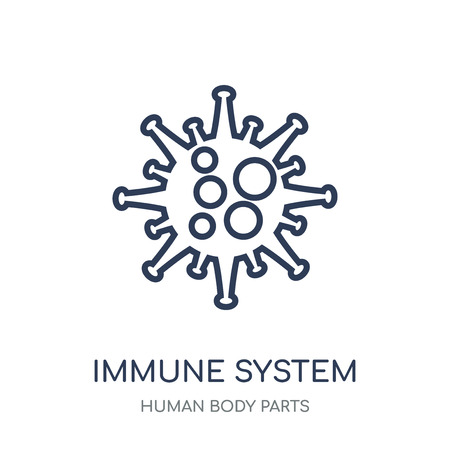 Immune System icon. Immune System linear symbol design from Human Body Parts collection.