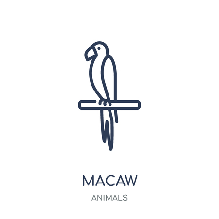 Macaw icon. Macaw linear symbol design from Animals collection. Simple outline element vector illustration on white background.  イラスト・ベクター素材