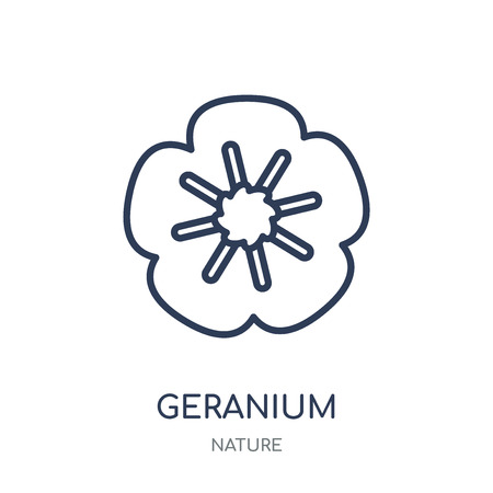 Geranium icon. Geranium linear symbol design from Nature collection. Simple outline element vector illustration on white background.