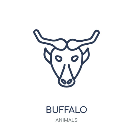 Buffalo icon. Buffalo linear symbol design from Animals collection. Simple outline element vector illustration on white background.