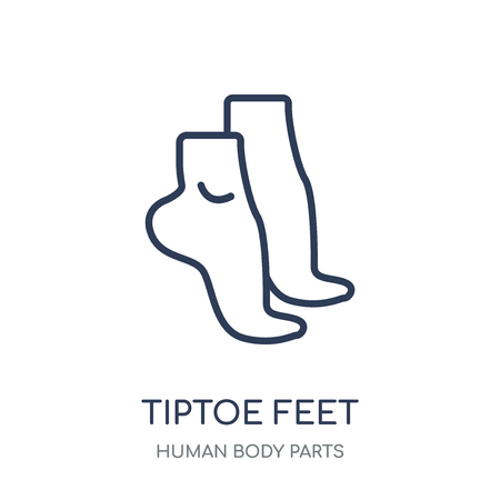 Tiptoe feet icon. Tiptoe feet linear symbol design from Human Body Parts collection.