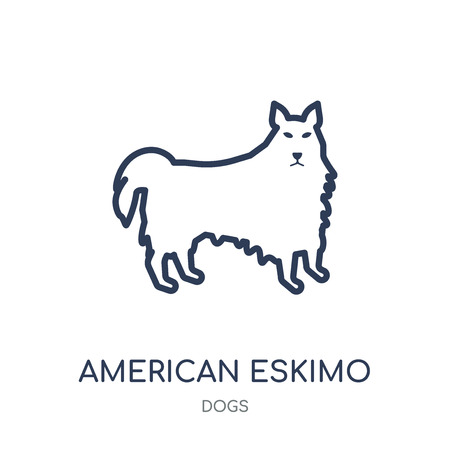 American Eskimo Dog dog icon. American Eskimo Dog dog linear symbol design from Dogs collection. Simple outline element vector illustration on white background. Vetores