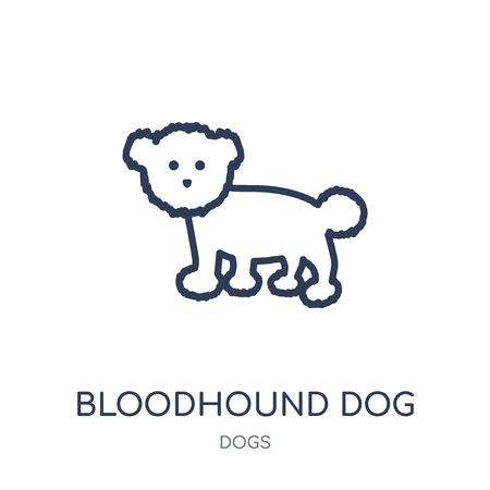 Icona del cane segugio. Disegno di simbolo lineare di Bloodhound cane da collezione di cani. Illustrazione di vettore dell'elemento di contorno semplice su priorità bassa bianca.