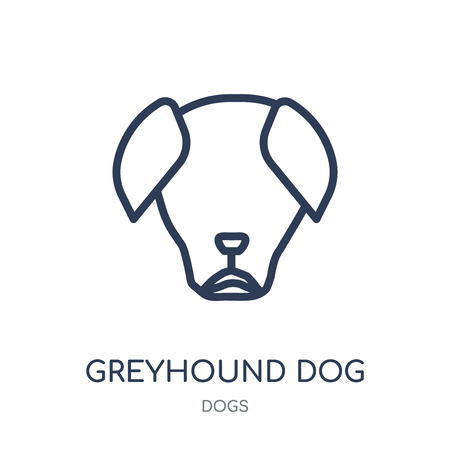 Greyhound dog icon. Greyhound dog linear symbol design from Dogs collection. Simple outline element vector illustration on white background. Stock Illustratie