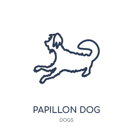 Papillon dog icon. Papillon dog linear symbol design from Dogs collection. Simple outline element vector illustration on white background.