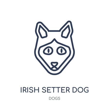 Irish Setter dog icon. Irish Setter dog linear symbol design from Dogs collection. Simple outline element vector illustration on white background.