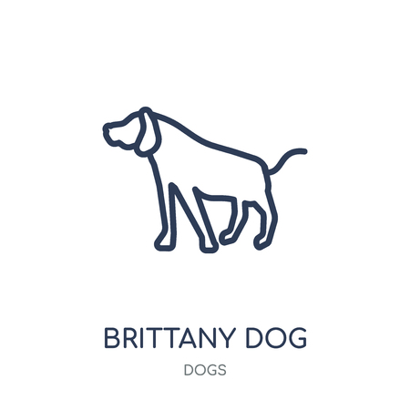 Brittany dog icon. Brittany dog linear symbol design from Dogs collection. Simple outline element vector illustration on white background. 向量圖像