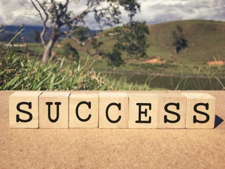 Motivational and inspirational word - Success written on wooden blocks. Blurred styled background. Stock Photo