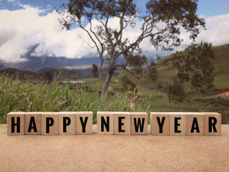 New Year concept - Happy New Year written on wooden blocks. Blurred styled background.