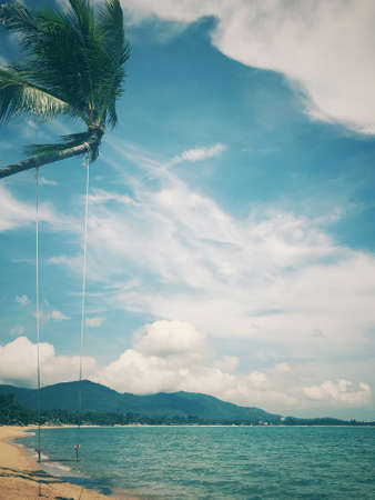 Background of a swing hanging on a coconut tree by the beach. Stock Photo