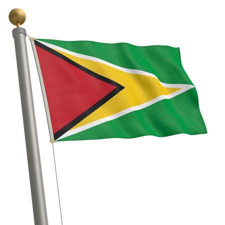 guyana: The flag of Guyana fluttering on flagpole