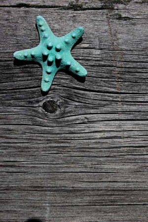 Aqua starfish on barnboard, barn wood at beach ocean Stock Photo - 18097648