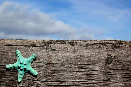 Starfish on a barn board wood with sky in background beach Stock Photo - 18097638