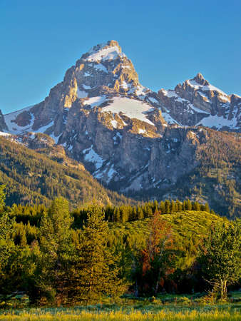 Grand teton national park in summer tetons with trees photo