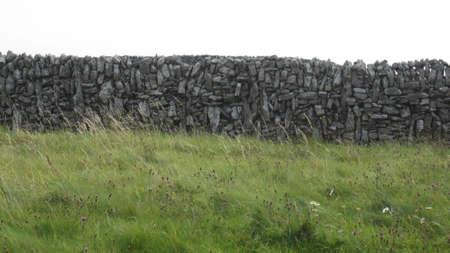 rockwall: Rock Wall in a Grassy Field
