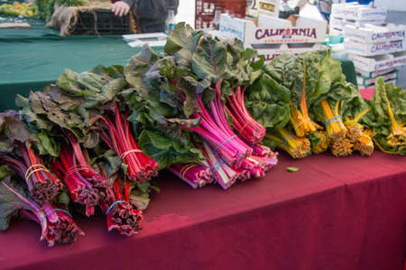 grocer: Red and Orange Kale at a farmers Market