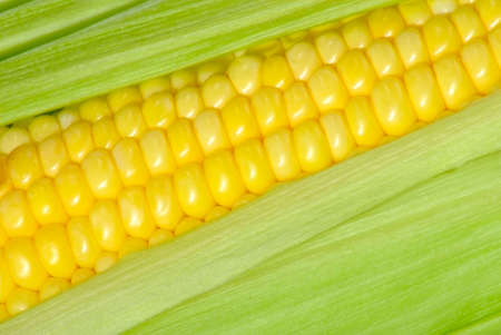 image of corn as background closeup Stock Photo