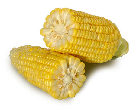 Isolated image of two corn on a white background