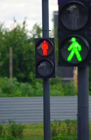 traffic lights: image of two traffic signals on the road on a background of trees