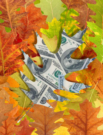 dollars and autumn leaves closeup Stock Photo
