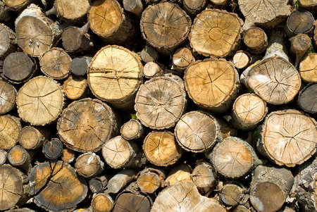 kindling: dry firewood laid in a heap for kindling the furnace Stock Photo