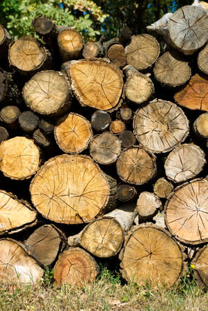 kindling: image of dry firewood laid in a heap for kindling the furnace