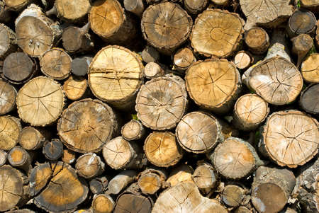 firewood: image of dry firewood laid in a heap