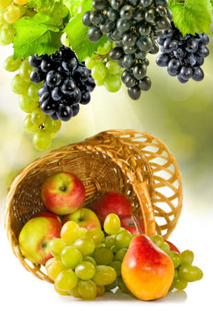 fruits in a basket: image of of different fruits in a basket closeup Stock Photo