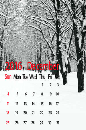 december: winter snow-covered forest. Calendar for December 2016.