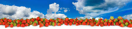 refreshment: image of a ripe strawberry close-up