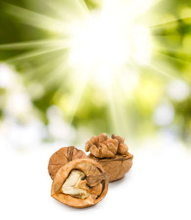 craked: image of walnuts on the sun background