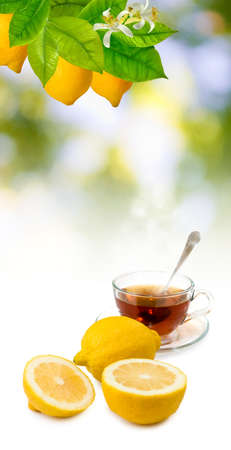 image of tea and lemon close-up Stock Photo