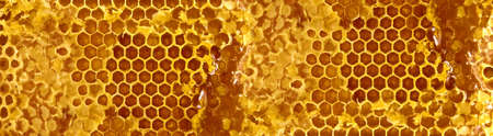 cluster house: image of honeycomb close up Stock Photo