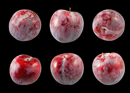Isolated image of a plum close up Stock Photo
